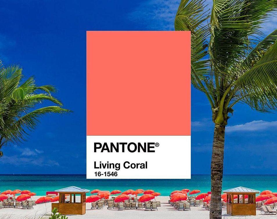 Living Coral Kolor Roku 2019 wg Pantone