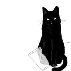 smieszny-kot-plakat-w-ramie-na-sciane