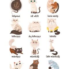 ulubione-kawy-koty-kawa-rodzaje-ilustracja-plakat-w-ramie