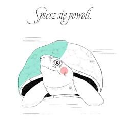 Spiesz się powoli - napis z żółwiem