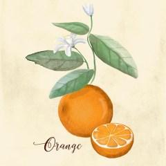 rustykalny-styl-pomarancze-dekoracje-do-kuchni