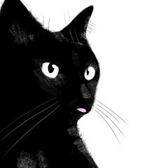 czarny-kot-plakat-na-ścianę