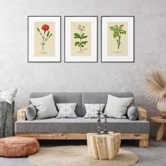 galeria-na-sciane-tripleks-botaniczny