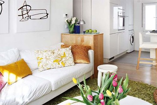 white small living room design with pillows