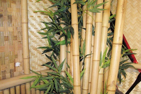 ideas for decorating a very small living room how to decor go eco friendly with bamboo interior designs