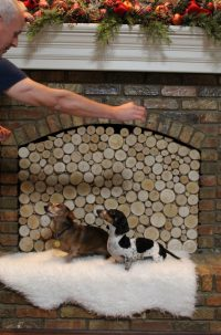 Create A Stacked Birch Log Fireplace Insert
