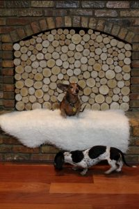 Create A Stacked Birch Log Fireplace Insert - Decor to Adore