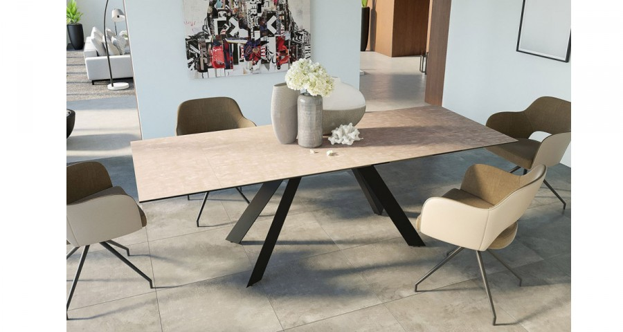 table de repas decostock