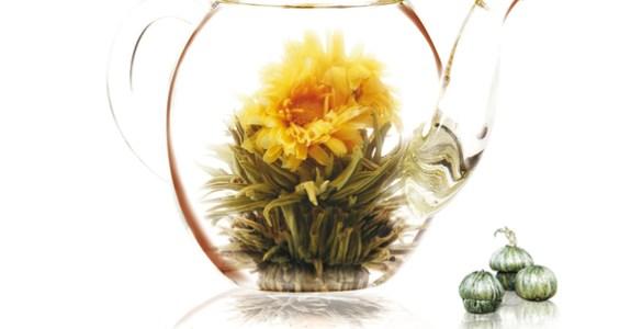 fleurs de thé blanc Abloom