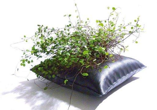 Green Pillow coussin cache pot flottant Alexis Tricoire