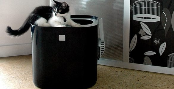 ModKat Litter Box litière design chats