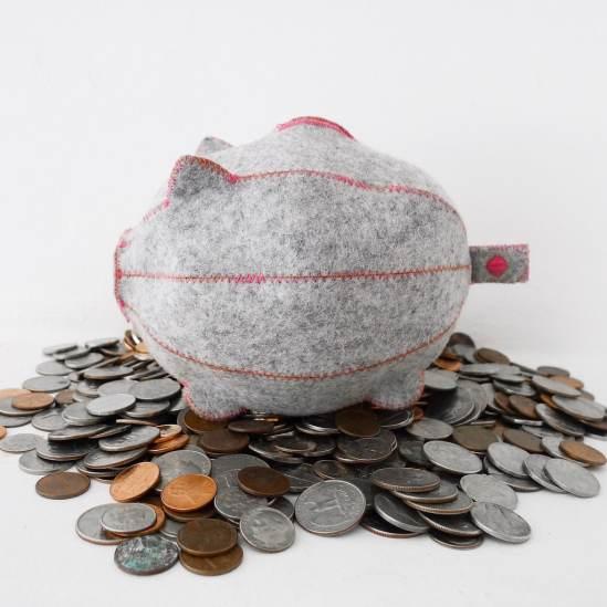 PiggyBank_with_a_coin-1_1024x1024