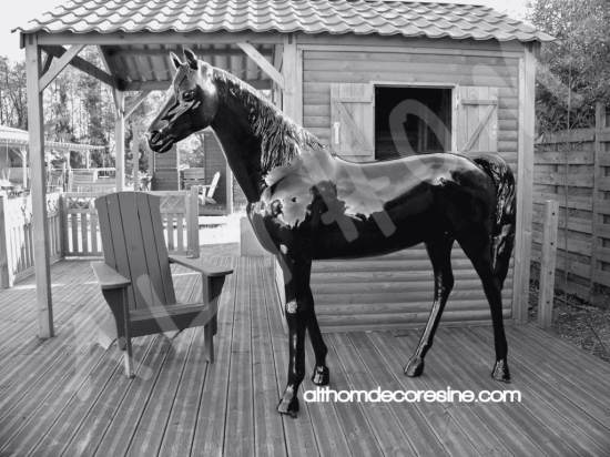 cheval jardin secret story 8