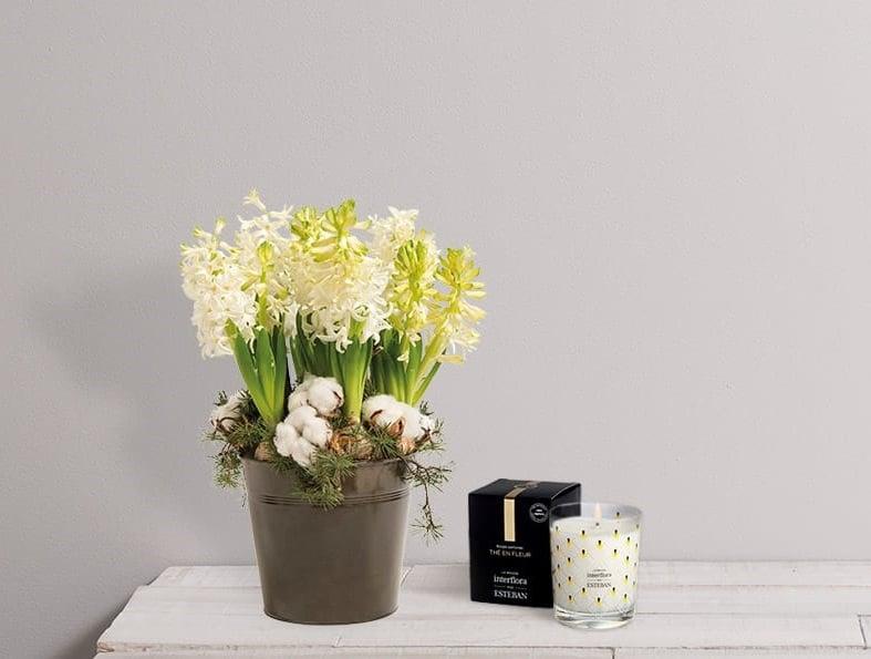 D coration florale no l quelles plantes choisir - Decoration florale maison ...