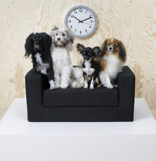 LURVIG - IKEA dévoile une nouvelle collection de meubles pour animaux de compagnie