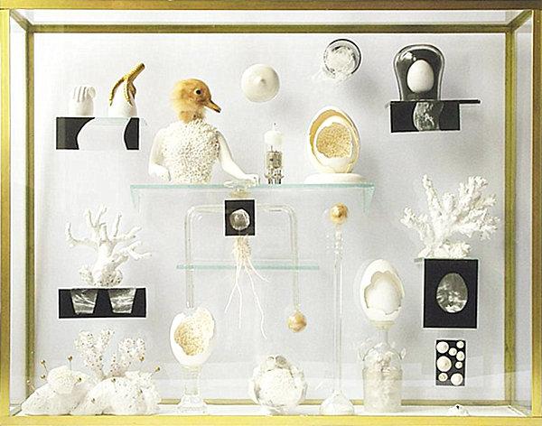Comment créer un cabinet de curiosités à la maison