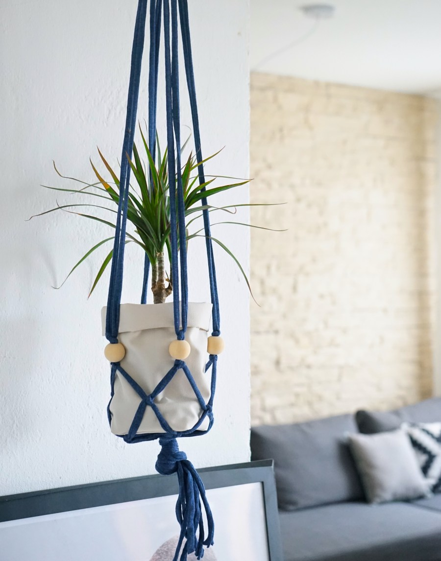 Mes_plantes_suspendues