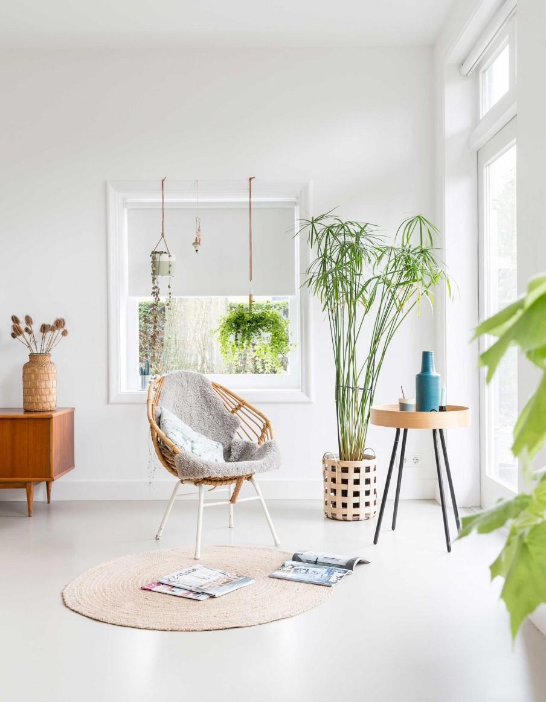 intérieur lumineux et végétal