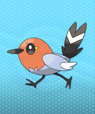 pokemon x y fletchling 01