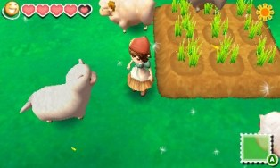 story of seasons 18