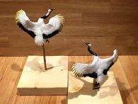 amezaiku-hyper-realistic-animal-lollipops-shinri-tezuka-japan-20