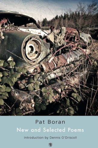 New and Selected Poems cover. Pat Boran. Dedalus Press, poetry from Ireland and the world