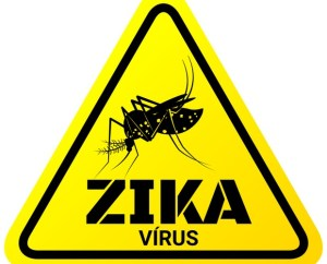 Curiosidades sobre o Zika Vírus