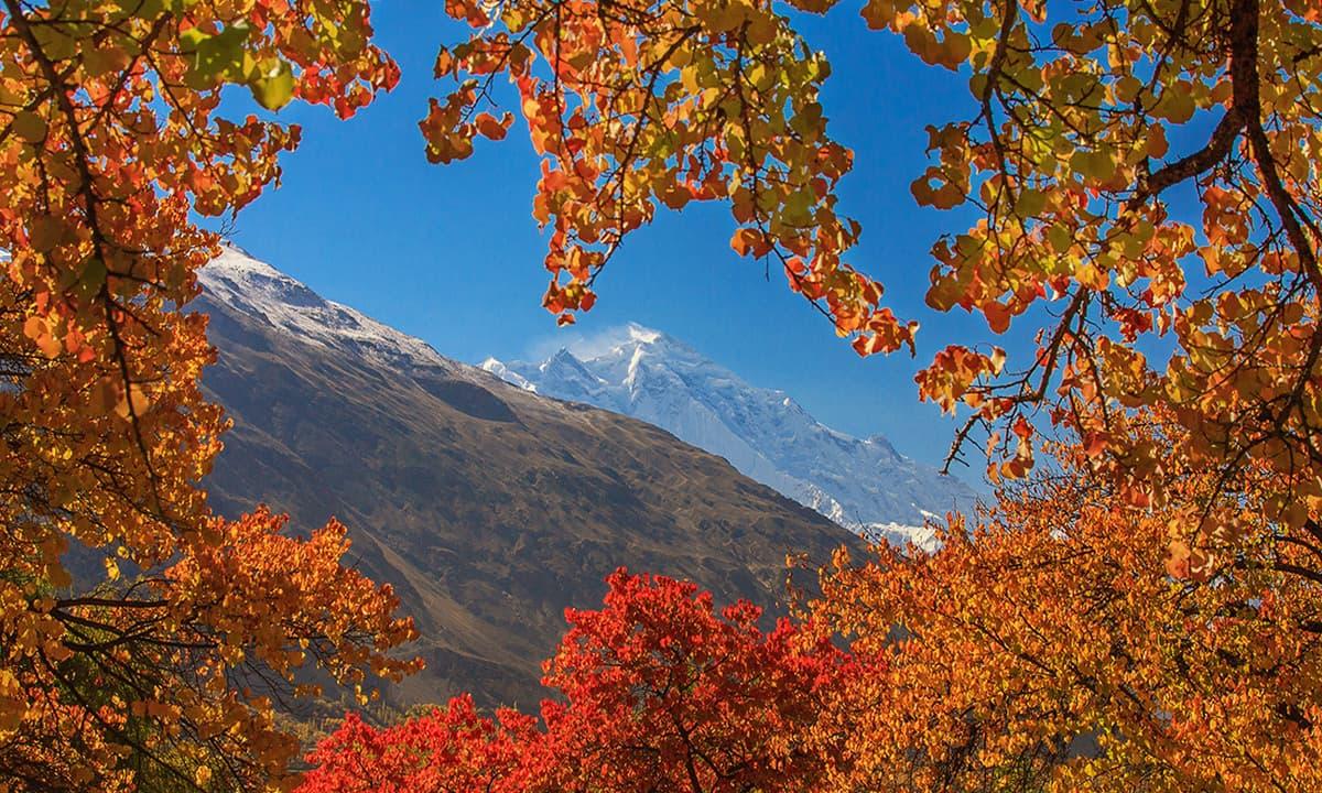 View of Rakaposhi from Hunza valley