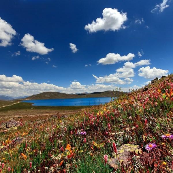 The beauty of Sheosar Lake Deosai Skardu