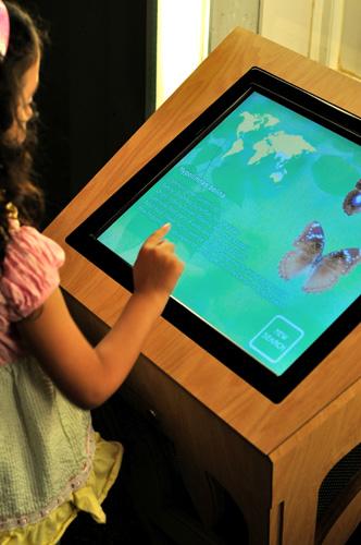 museu_insetos_painel-digital