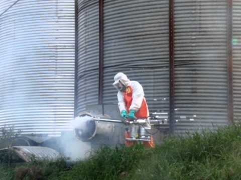 fumigação de ambientes externos