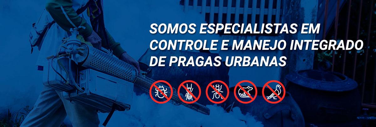 Somos especialistas em Controle e Manejo Integrado de Pragas Urbanas