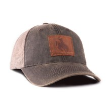 State Of Wyoming Hats - Year of Clean Water