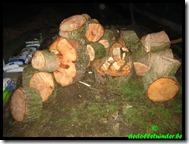 Gratis hout
