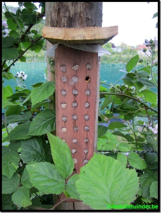Nestkastje voor bijen