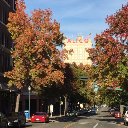 Austin Avenue, downtown Waco, in the fall