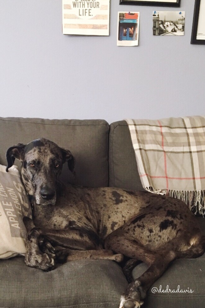 Adding Cozy Fall Blankets To Your Home Décor