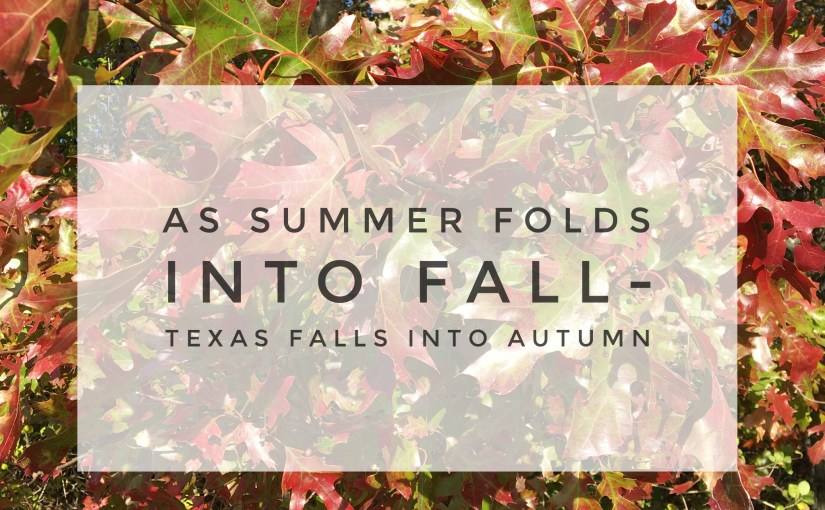As Summer Folds Into Fall-Texas Falls into Autumn