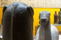 royal-ontario-museum-exhibit03