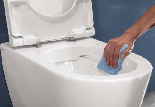 Sanitairreiniger BIOnyx