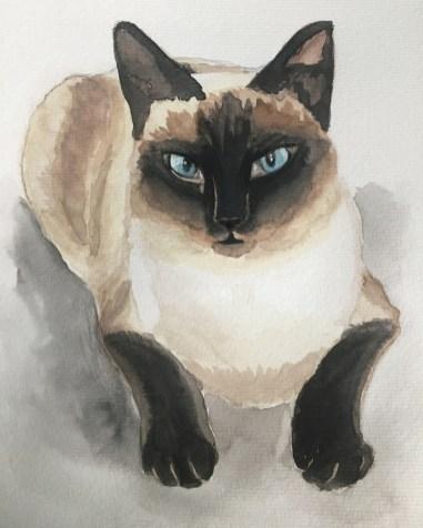 cat_monkey