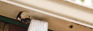 Fanwood Gutter Repair