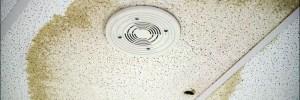 Cranford NJ Roof Leak Repair