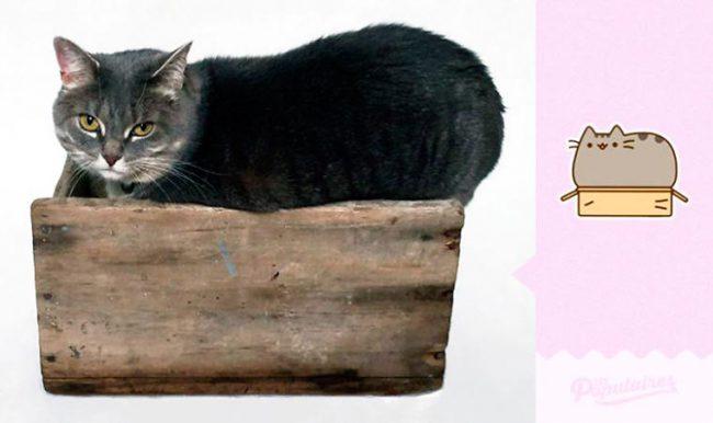 Julien-Therrien-Pusheen-the-Cat-2