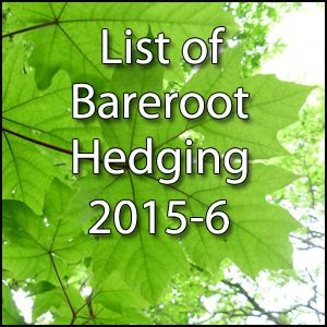 Bareroot Hedging for 2015-6