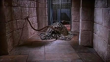 Island Of Terror DVD NTSC Region 0 1966