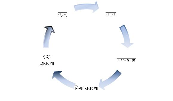 samay ka sadupyog mahatv nibandh kavita kahani dohe quotes in hindi