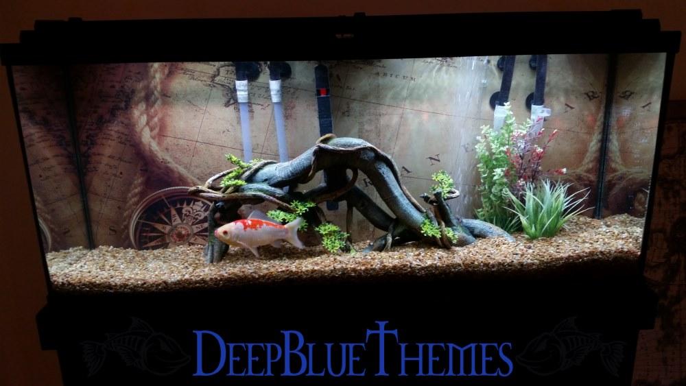 Aquarium Image Gallery  DeepBlueThemescom