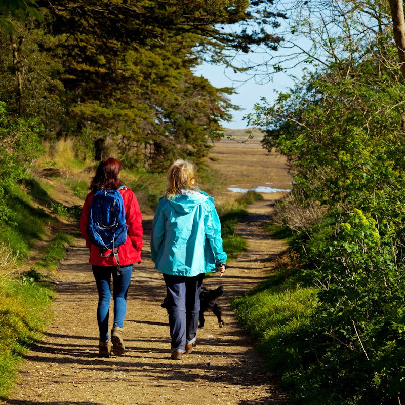 Norfolk Walking & Cycling Festival