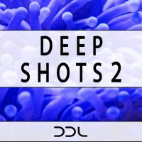 drums,drum,samples,one-shots,deep house,musicproduction